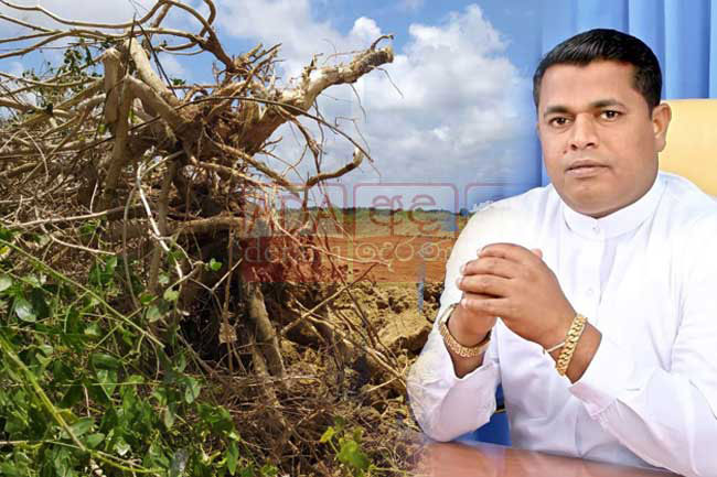 Fmr Arachchikattuwa PS Chairman remanded over Anawilundawa wetland clearing