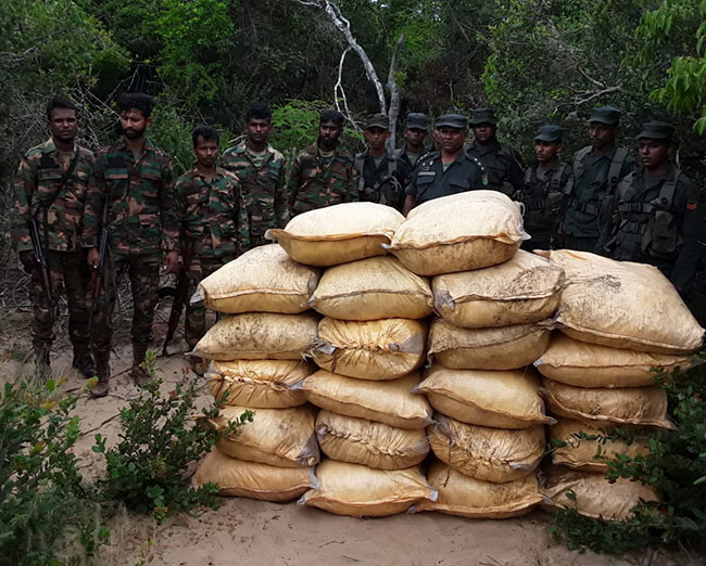 Troops apprehend more smuggled turmeric stocks in Mannar