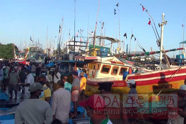 Random PCR tests carried out at Beruwala fisheries harbour