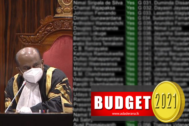 Second Reading of Budget 2021 passed in Parliament