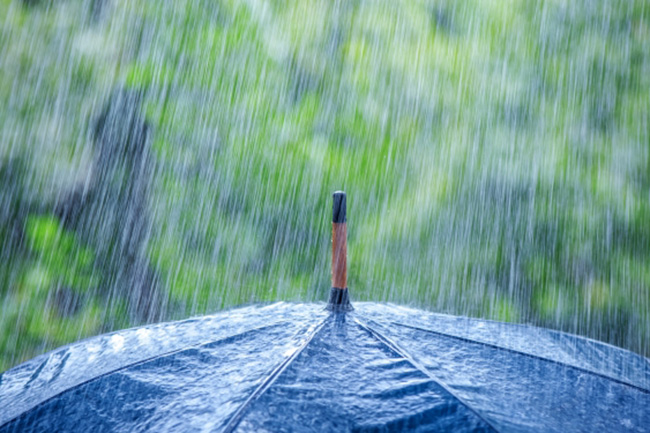 Met. Dept. forecasts showers or thundershowers in five provinces