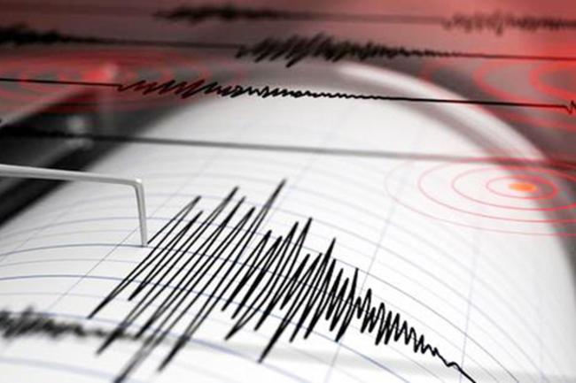 Minor tremor felt in Walapane