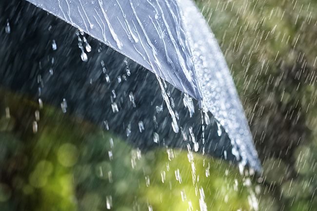 Showers or thundershowers expected in the afternoon