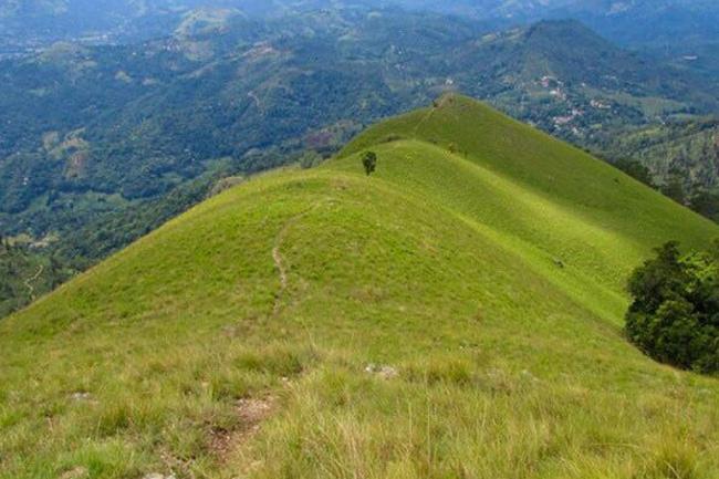 Hiking Narangala mountain range banned until further notice