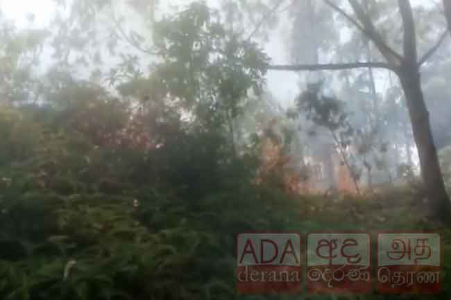 SLAF deploys helicopter to douse fire at Ravana Ella forest reserve