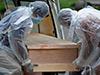 Fourteen new COVID-related deaths in Sri Lanka