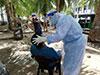 1,835 fresh cases of Covid-19 reported in Sri Lanka