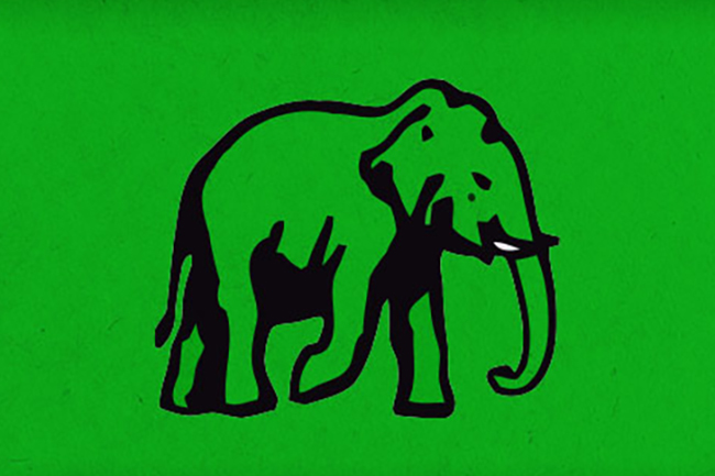 Posts of several UNP local govt. members including 3 UC chairmen vacated