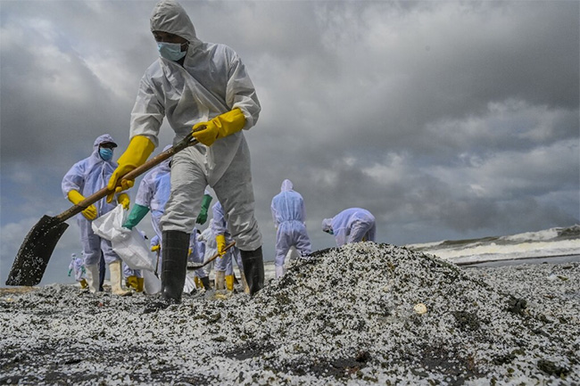 UK to assist Sri Lanka with X-press Pearl pollution response