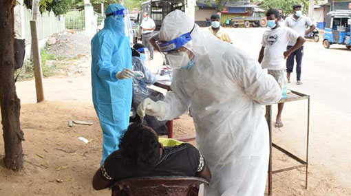 Daily coronavirus cases count climbs to 1,447