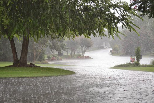 Fairly heavy rains in Western & four other provinces