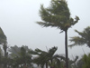 Met. Dept. issues advisory for gusty winds