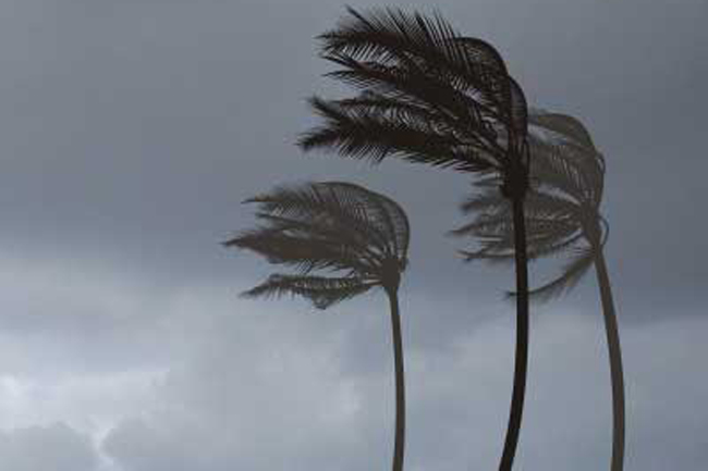Weather advisory issued for strong winds, rough seas