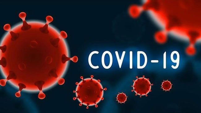 Daily COVID cases climb to 1,653 while deaths go up by 48