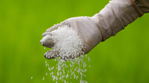 Gazette issued for importing Nitrogen extracts and Potassium