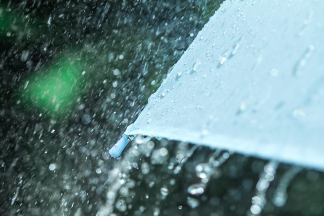 Spells of showers in several areas including Western Province