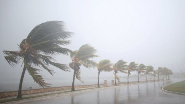 Amber alert issued over heavy rain and strong winds