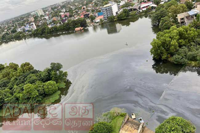 Mystery behind oil slick on Diyawanna Lake uncovered