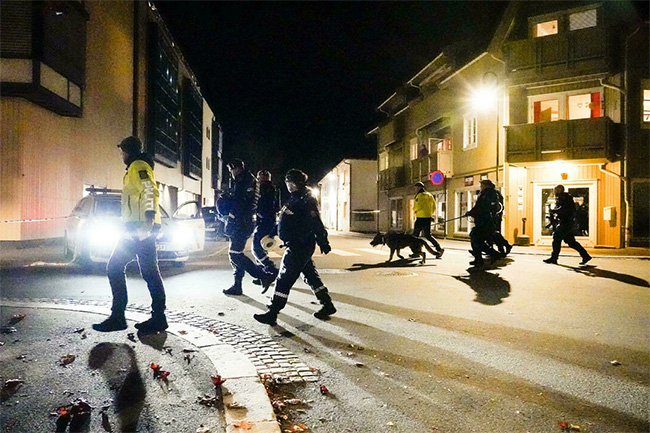 Man armed with bow and arrow kills five people in Norway