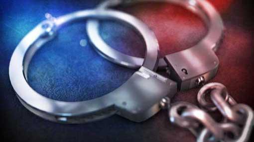 Nine treasure hunters arrested