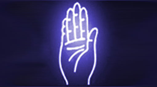Nine SLFP District Organisers appointed